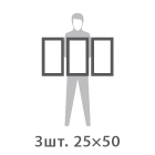 Холст 3 модуля по 25 х 50 см
